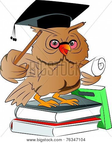 Smart Owl Graduate, Illustration