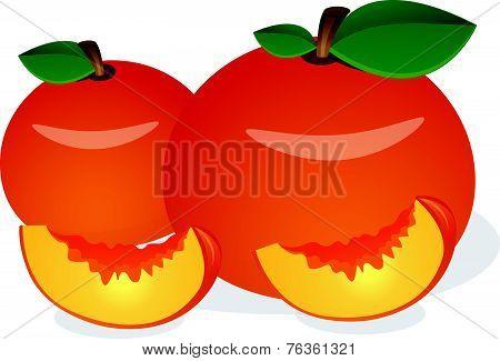 Peach, Fruit, Illustration