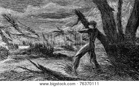 A Terrible Storm. I Cling To The Branch Of A Tree, Vintage Engraving.