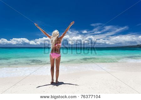 Woman In Bikini On Tropical Beach
