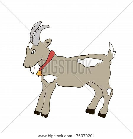 goat with a bell