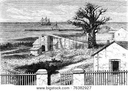 View Of Dakar, Vintage Engraving.