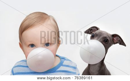 Boy And Dog With Chewing Gum