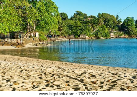 Attractive Beach View with Green Trees on the Seaside on a Sunny Day at Port Launay, Seychelles