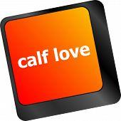 stock photo of office romance  - calf love words showing romance and love on keyboard keys - JPG