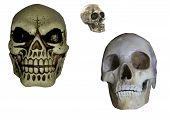 image of roller-derby  - set of 3 halloween skulls in vector format - JPG