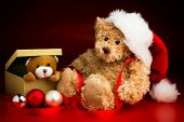 stock photo of mating bears  - A brown teddy bear wearing a Christmas hat sitting next to a box with a teddy bear peeking out over the edge isolated against a red and black background and three baubles in front of them - JPG