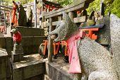 image of inari  - Stone fox  - JPG