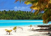 Tropical Beach Scene poster