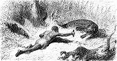 stock photo of crocodilian  - Hunting alligators vintage engraved illustration - JPG
