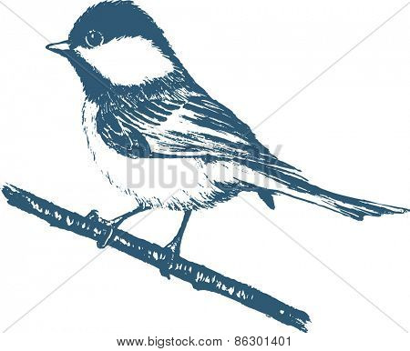 Silhouette of a blue tit on a white background. Change the color is one click of a mouse
