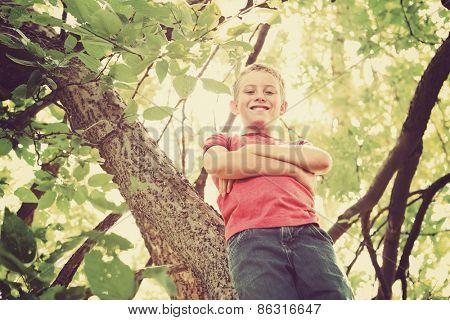 Happy smiling boy  in a tree.  Instagram effect.
