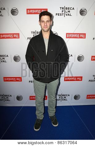 LOS ANGELES - MAR 23:  Justin Bartha at the 2015 Tribeca Film Festival Official Kick-off Party at the The Standard on March 23, 2015 in West Hollywood, CA