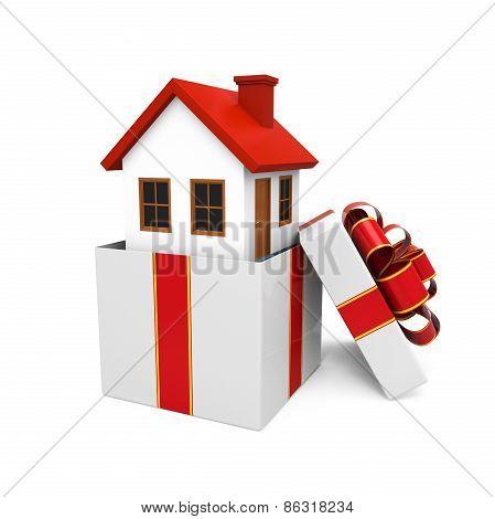 House Gift Isolated