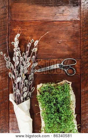 Easter Composition Of Cress And Catkins On Wooden Table