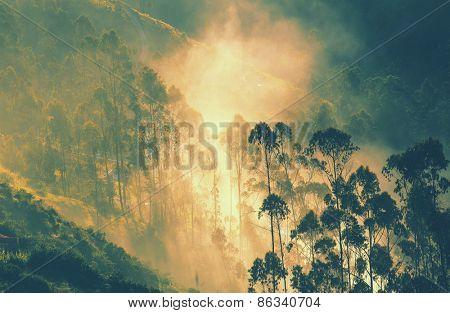 Sunrise in  green jungle covered hills