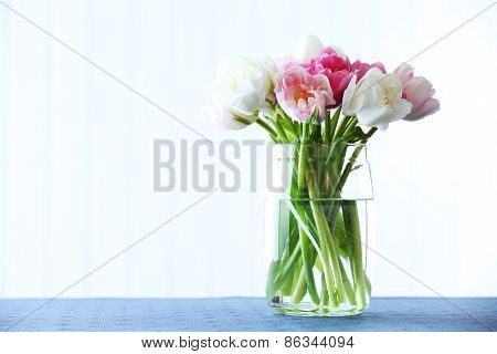 Beautiful tulips in glass vase on light background