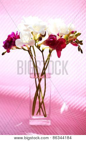 Beautiful spring flowers in glass vase on pink background