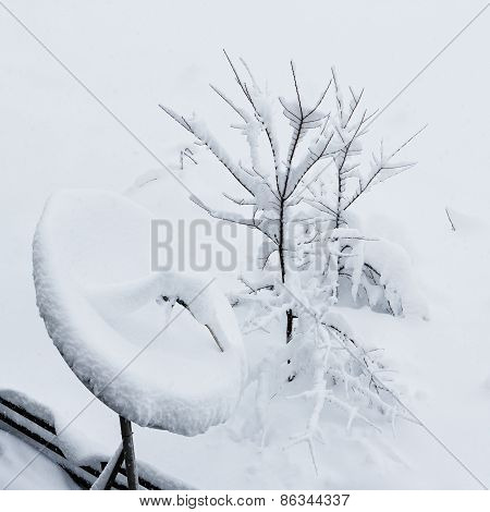 Satellite antenna covered by snow