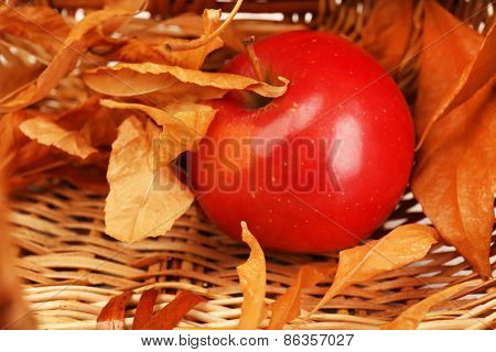 Apple with dried leaves in wicker basket, closeup