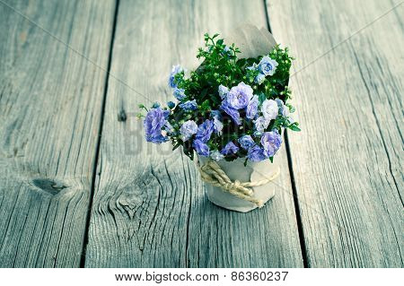 Blue Campanula Terry Flowers In Paper Packaging, On Wooden Background