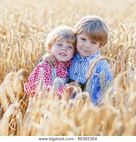 Two Little Sibling Boys Having Fun And Speaking On Yellow Wheat Field