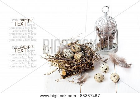 Quail Eggs With Birdcage On White Wooden Background, With Space For Text