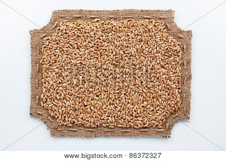 Figured Frame Made Of Burlap And  Wheat Grains