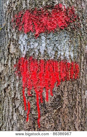 on a tree, the red-white-red flag is painted on a hiking trail.