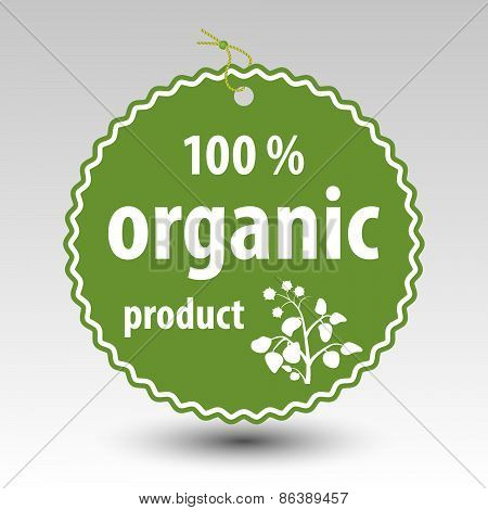 Vector Green 100 % Organic Product Paper Price Tag Label