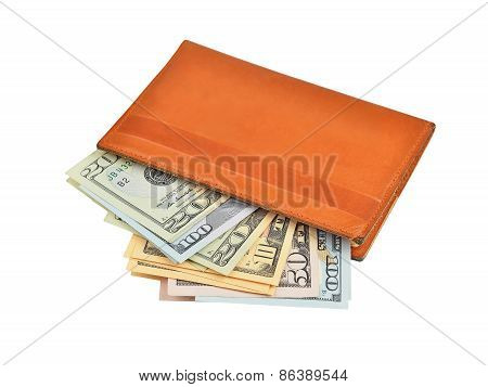 Dollar banknote in wallet