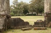 picture of bluff  - The pillars are part of the ruins of the 1910 Wilson Mansion at Palmetto Bluff - JPG