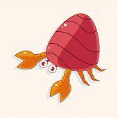 picture of hermit crab  - Hermit crabs theme elements - JPG