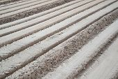 picture of oblique  - Fresh tractor traces in dirt ground - JPG