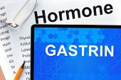picture of hormones  - Papers with hormones list and tablet  with word gastrin - JPG