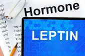 stock photo of hormone  - Papers with hormones list and tablet  with word leptin - JPG