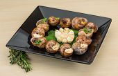 stock photo of escargot  - Escargot with rosemary thyme garlic and melissa - JPG