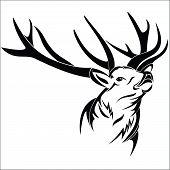 pic of deer head  - Vector illustration  - JPG