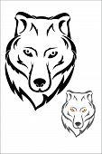 pic of white wolf  - Vector illustration  - JPG