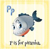 stock photo of piranha  - Flashcard letter P is for piranha - JPG