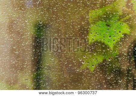 Raindrops On Window Pane During Night Rain