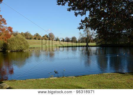 Lake In English Parkland