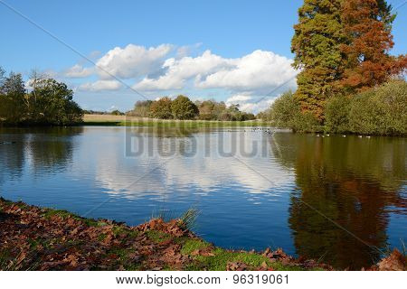 Lake In English Parkland