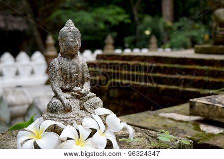 Stone Buddha statue  with moss and Frangipani flowers