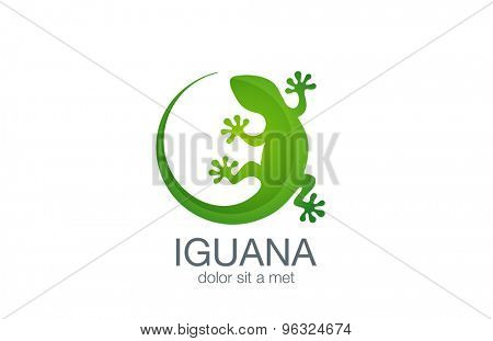 Lizard Logo design vector template. Iguana icon illustration. Salamander logotype. Gecko concept top view.