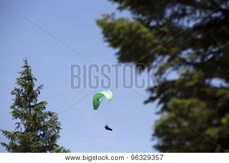 Green Paraglider Between Trees
