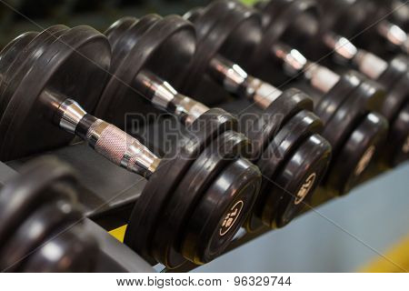 Fitness exercise equipment dumbbell weights