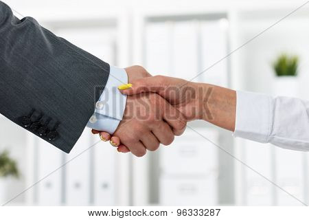 Male And Female Handshake In Office