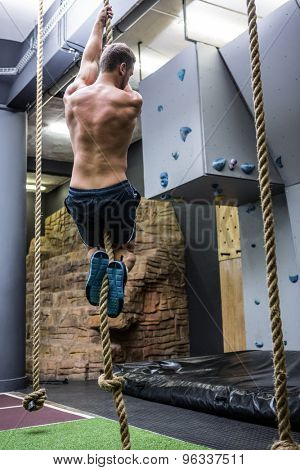 Back view of muscular man doing rope climbing in crossfit gym