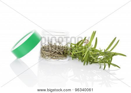 Rosemary, Culinary Aromatic Herbs.